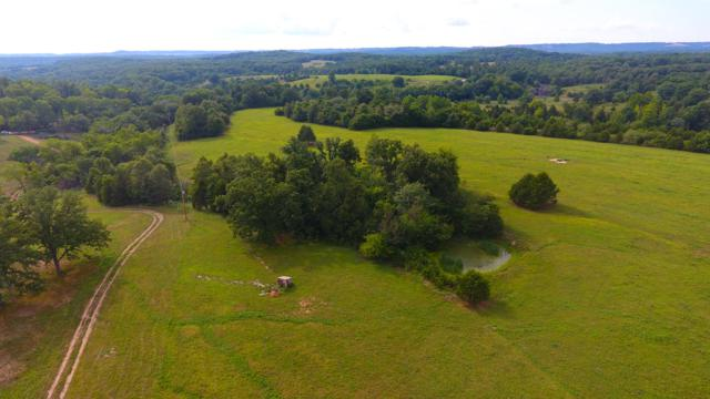 Tbd T537, Ava, MO 65608 (MLS #60115635) :: Sue Carter Real Estate Group