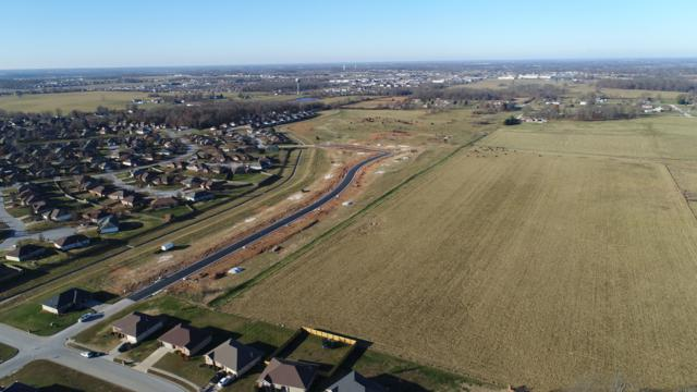Lot 524 River Pointe, Ozark, MO 65721 (MLS #60121801) :: Team Real Estate - Springfield