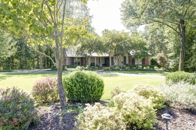 5590 E Timberwood Court, Springfield, MO 65809 (MLS #60122823) :: Sue Carter Real Estate Group