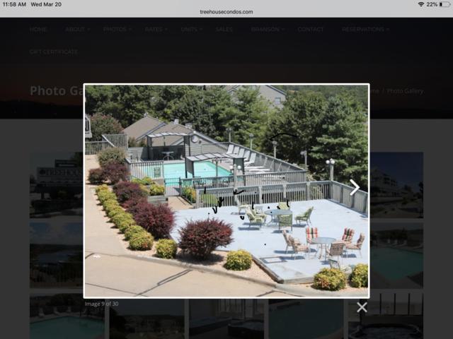 1204 Treehouse Lane, Branson, MO 65616 (MLS #60131828) :: Sue Carter Real Estate Group