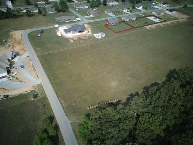 Ava, MO 65608 :: Sue Carter Real Estate Group