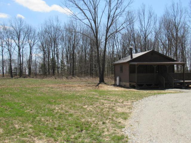 0 Irish Meadows Drive, Seymour, MO 65746 (MLS #60140321) :: Sue Carter Real Estate Group