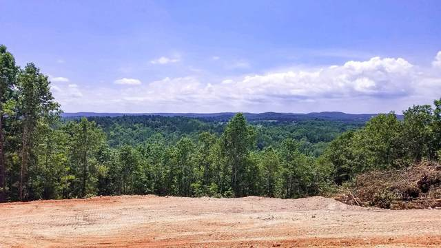 000 Blue Bird Rd Lot 17, Eminence, MO 65466 (MLS #60155108) :: Clay & Clay Real Estate Team