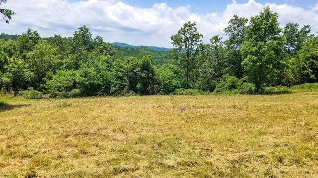 000 Blue Bird Rd Lot 18, Eminence, MO 65466 (MLS #60155112) :: Clay & Clay Real Estate Team