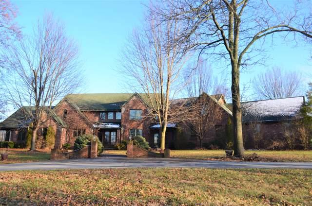 6050 E Palomino Lane, Rogersville, MO 65742 (MLS #60155161) :: Sue Carter Real Estate Group