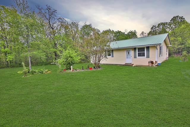 1095 County Road 302, Alton, MO 65606 (MLS #60161745) :: Team Real Estate - Springfield