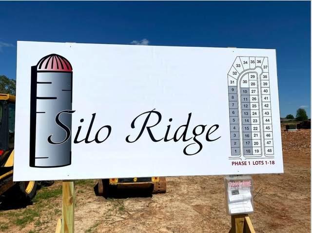 1507 E Hayloft Drive, Ozark, MO 65721 (MLS #60162983) :: Sue Carter Real Estate Group
