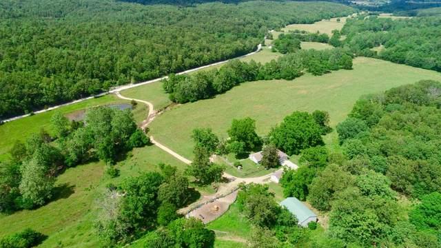12188 Greenwood Road, Cabool, MO 65689 (MLS #60166715) :: Team Real Estate - Springfield