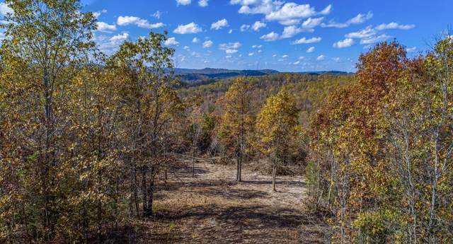 000 Blue Bird Rd Lot 19, Eminence, MO 65466 (MLS #60175895) :: The Real Estate Riders