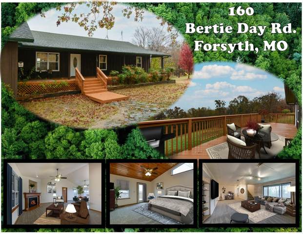 160 Bertie Day Road, Forsyth, MO 65653 (MLS #60176716) :: Team Real Estate - Springfield