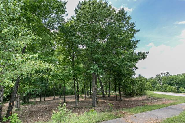 5205 S Whitehaven Drive, Springfield, MO 65809 (MLS #60181221) :: Lakeland Realty, Inc.