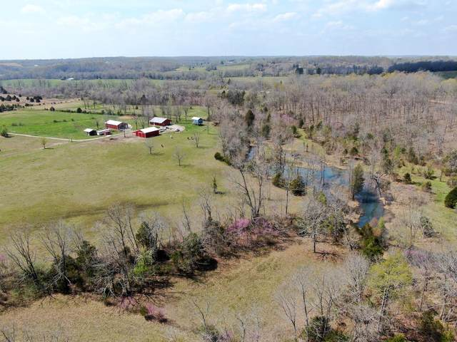 171 County Road 101, Alton, MO 65606 (MLS #60187287) :: United Country Real Estate