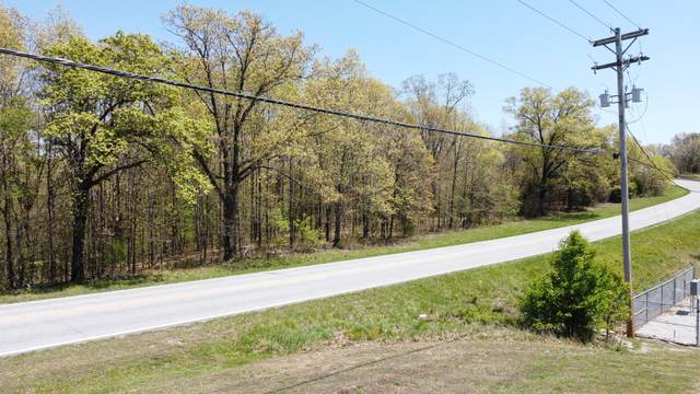 000 Mo-413 Highway, Reeds Spring, MO 65737 (MLS #60188747) :: Tucker Real Estate Group | EXP Realty