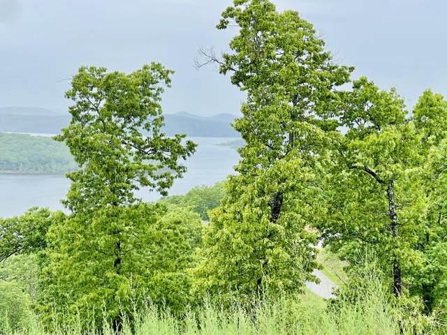 80 Pinnacle Shores Drive, Lampe, MO 65681 (MLS #60190935) :: Lakeland Realty, Inc.