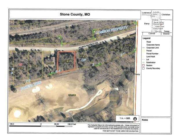 000 Roark Branch Drive, Branson West, MO 65737 (MLS #60201379) :: Sue Carter Real Estate Group