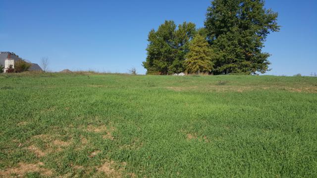 Lot 16 Ph 16 Rivercut, Springfield, MO 65810 (MLS #60079563) :: Sue Carter Real Estate Group
