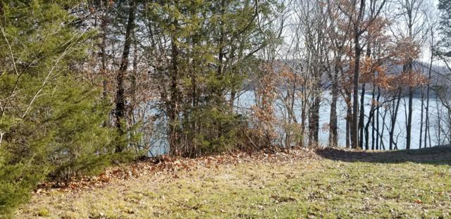 Tbd Point 15 Dr., Cape Fair, MO 65624 (MLS #60116138) :: Sue Carter Real Estate Group