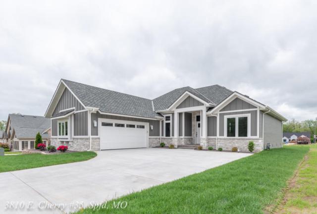 3810 E Cherry St #35, Springfield, MO 65809 (MLS #60124128) :: Team Real Estate - Springfield