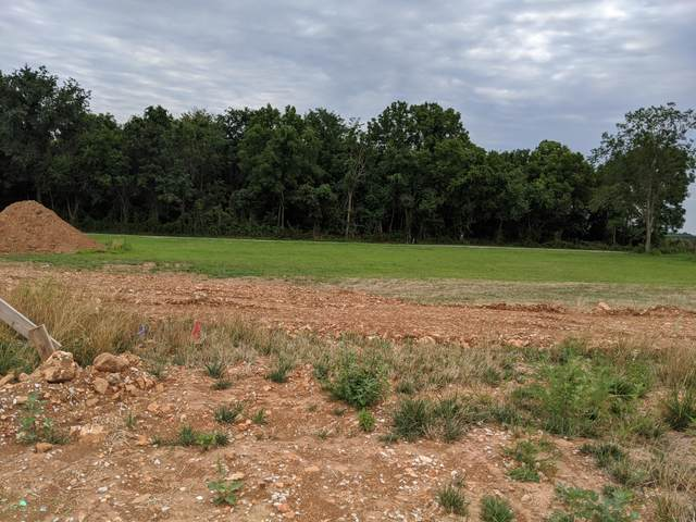 4878 W Camelot Street Lot 2, Springfield, MO 65802 (MLS #60163493) :: The Real Estate Riders