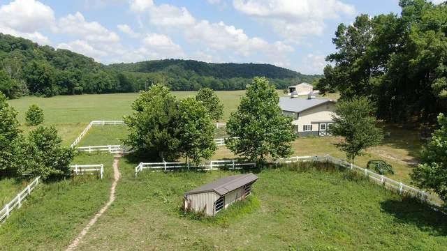 2029 Horse Haven Trail, Nixa, MO 65714 (MLS #60168059) :: Sue Carter Real Estate Group