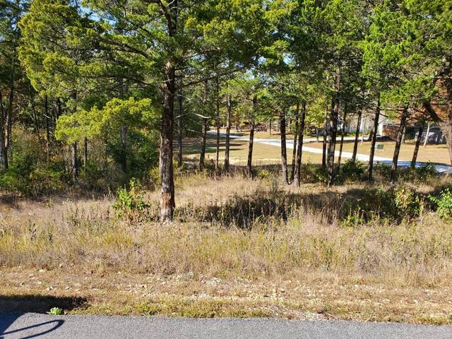 000 Silver Sunset Lane Lot 175, Kimberling City, MO 65686 (MLS #60176257) :: The Real Estate Riders