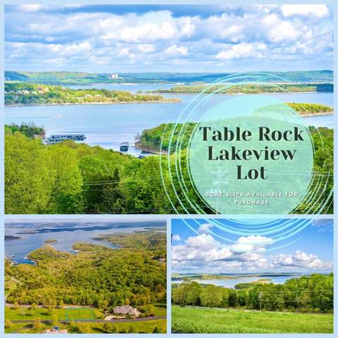 Tbd Lot 5a Carriage Oaks Drive Lot 5A, Reeds Spring, MO 65737 (MLS #60179641) :: Tucker Real Estate Group | EXP Realty