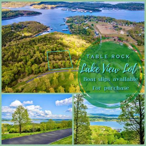Lot 2c Carriage Oaks Dr Drive Lot 2C, Branson West, MO 65737 (MLS #60179649) :: Tucker Real Estate Group | EXP Realty