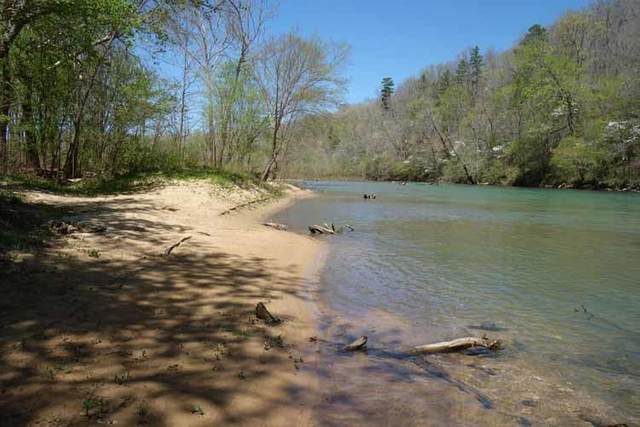 16251 County Road 225, Eminence, MO 65466 (MLS #60188229) :: Winans - Lee Team | Keller Williams Tri-Lakes