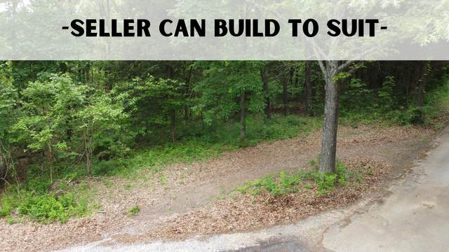 723 Miners Trail Lot 16, Crane, MO 65633 (MLS #60193387) :: Sue Carter Real Estate Group
