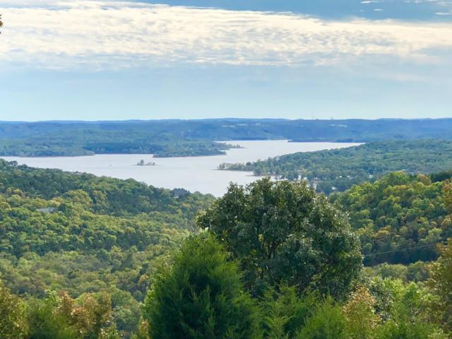 4669 State Highway 265, Branson, MO 65616 (MLS #30352928) :: The Real Estate Riders
