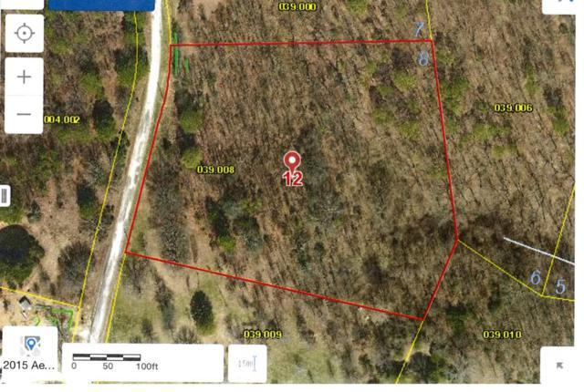 Tbd Cara Lane, Blue Eye, MO 65611 (MLS #60111700) :: Sue Carter Real Estate Group