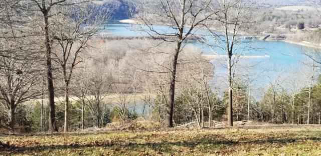 Tbd Lot 69 Point 15 Dr., Cape Fair, MO 65624 (MLS #60116274) :: Sue Carter Real Estate Group