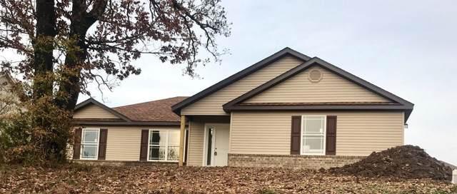435 Holts Lake Drive, Branson, MO 65616 (MLS #60140790) :: Team Real Estate - Springfield