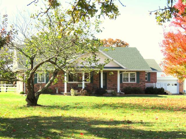 3128 New Hope Road, Fordland, MO 65652 (MLS #60142105) :: Team Real Estate - Springfield