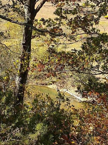 Lot # 42 Riverside Drive, Galena, MO 65656 (MLS #60143305) :: Evan's Group LLC
