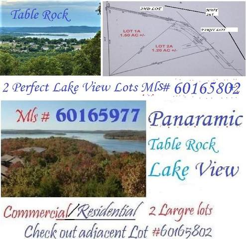 2291 State Hwy 265 - Lt 1 A, Branson, MO 65616 (MLS #60165977) :: The Real Estate Riders