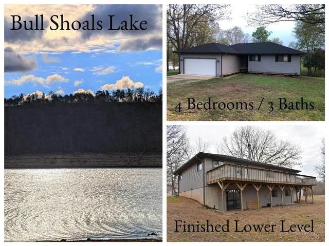 115 Gabriel Lane, Kirbyville, MO 65679 (MLS #60180590) :: Tucker Real Estate Group | EXP Realty