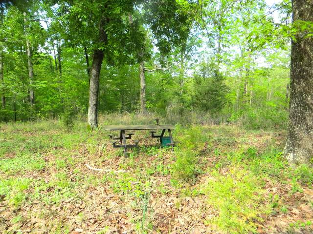Lot 13 Needles Eye, Mammoth Spring, AR 72554 (MLS #60183201) :: Tucker Real Estate Group | EXP Realty