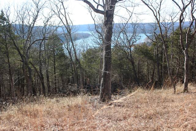Lot 2 Monticello Road, Galena, MO 65656 (MLS #60106007) :: Winans - Lee Team | Keller Williams Tri-Lakes
