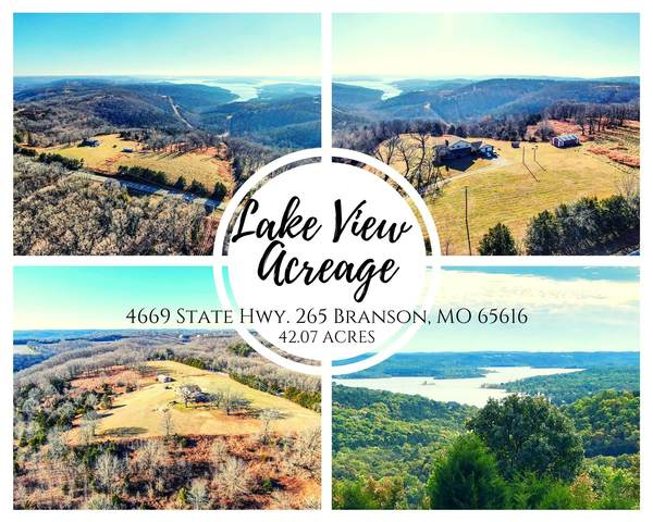 4669 State Highway 265, Branson, MO 65616 (MLS #30352928) :: Sue Carter Real Estate Group