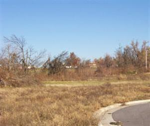 162 W Heritage Court #11, Fair Grove, MO 65648 (MLS #10726596) :: Good Life Realty of Missouri