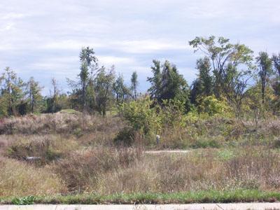 0 Stonehinge P 2, Springfield, MO 65807 (MLS #10807777) :: Greater Springfield, REALTORS