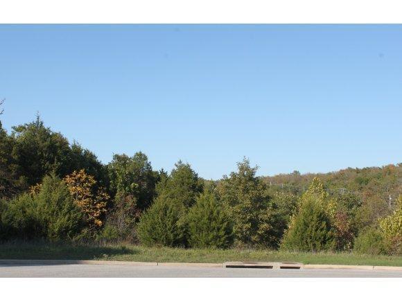 Comm Lots Deer Valley Drive Lots 17, 18 & 2, Branson, MO 65616 (MLS #30343930) :: Greater Springfield, REALTORS