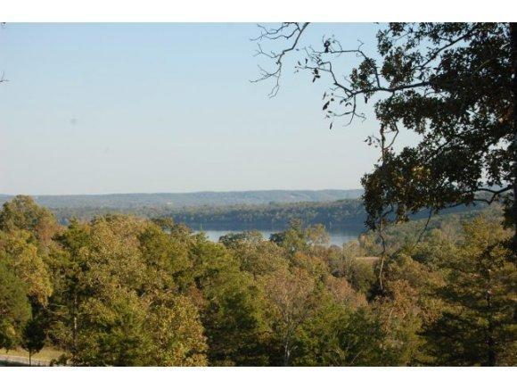 Lot 1 Cedar Bend, Shell Knob, MO 65747 (MLS #30355212) :: Team Real Estate - Springfield
