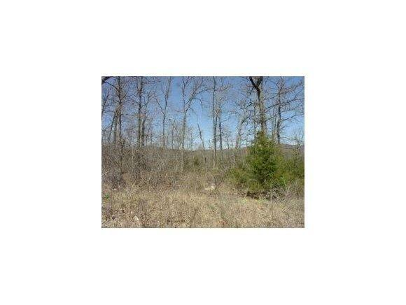 Lot 20 Campground Road, Merriam Woods, MO 65740 (MLS #30355612) :: Team Real Estate - Springfield