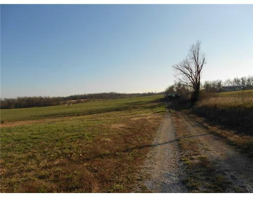 110 Mckenzie Lane N, Stella, MO 64867 (MLS #60011507) :: Team Real Estate - Springfield