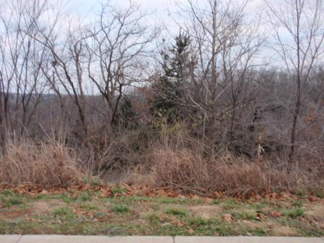 1532 E River Oaks Lane, Springfield, MO 65804 (MLS #60018735) :: Team Real Estate - Springfield