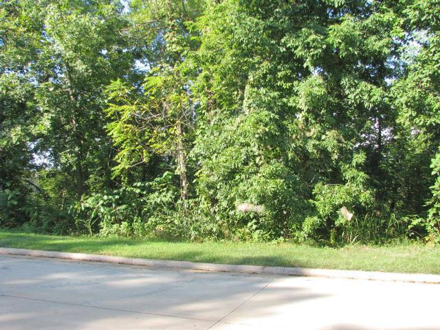 5466 S Dunrobin Drive, Springfield, MO 65809 (MLS #60019204) :: Team Real Estate - Springfield