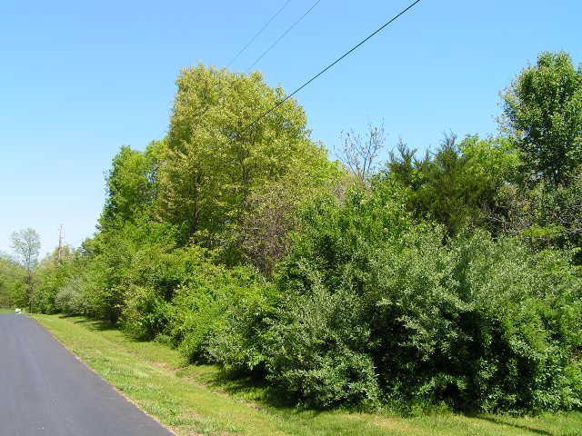 0 Stoneshire Drive, Highlandville, MO 65669 (MLS #60025138) :: Good Life Realty of Missouri