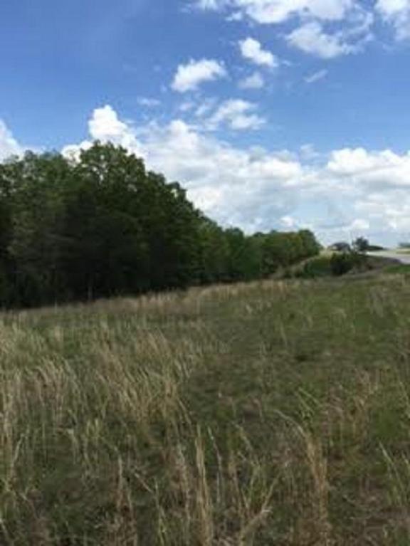 15300-5599 Us Hwy 54, Mack's Creek, MO 65786 (MLS #60049609) :: Good Life Realty of Missouri